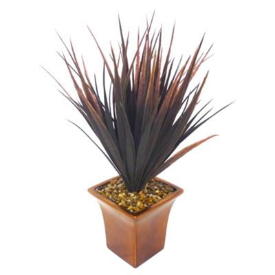 Plum Grasses in Bronze Lustre Planter
