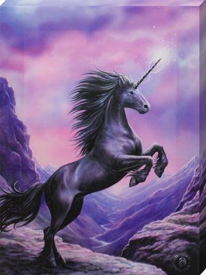 Anne Stokes Black Unicorn Canvas Print