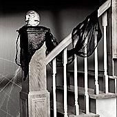 Black Gauze Drape - 4.5m Halloween Decoration