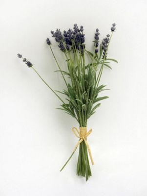 Artificial - Lavender Bundle