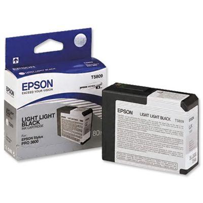 Epson Singlepack Light Light Black T580900