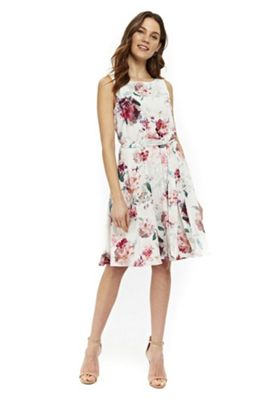 Wallis Pretty Bloom Fit and Flare Dress Cream 14