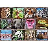 Wild Animal Collage - 1000pc Puzzle