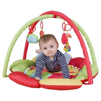Red Kite Safari Baby Playgym