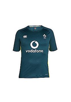 Canterbury Ireland Rugby Superlight Kids Poly Tee 17/18- Deep Teal - Green