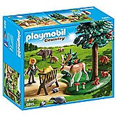 Playmobil 6815 Country Woodland Grove