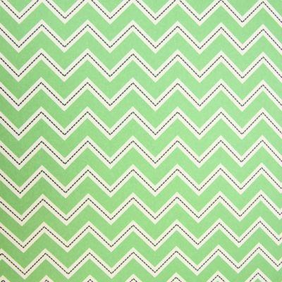 Rosehip Gift Wrap - Green Zig Zag