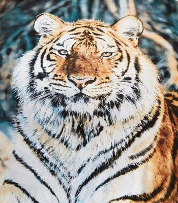3D Tiger Throw - 150 x 200 cm