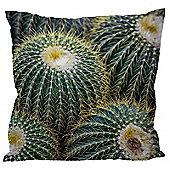 Puckator Prickly Cactus Cushion 50 x 50cm