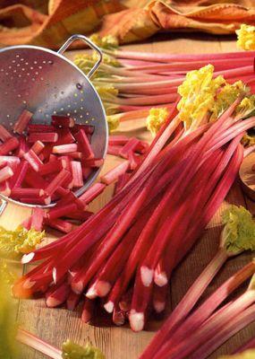 rhubarb Victoria crown (rhubarb 'Victoria')