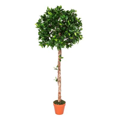 Homescapes Green 4ft Ficus Topiary Artificial Tree with Pot, 125 cm