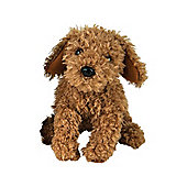 Go Puppy Go - Moose The Miniature Poodle