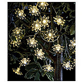 25 Flower Solar String Lights