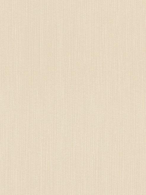 Textured Pearlescent Wallpaper Champagne Rasch 800326