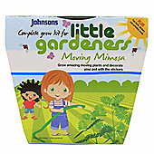 Little Gardeners Moving Mimosa Activity Pot Growing Kit