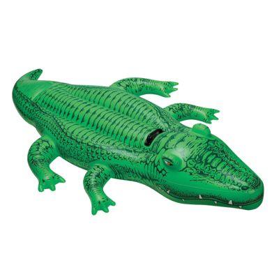 Lil Gator Ride On 66 - John Adams
