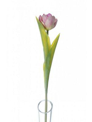 Artificial - Lydia Tulip - Pink