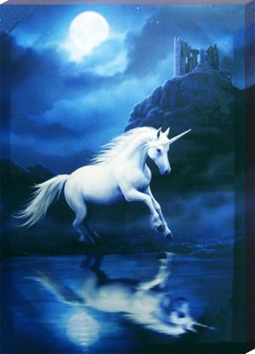 Anne Stokes Moonlight Unicorn Canvas Print