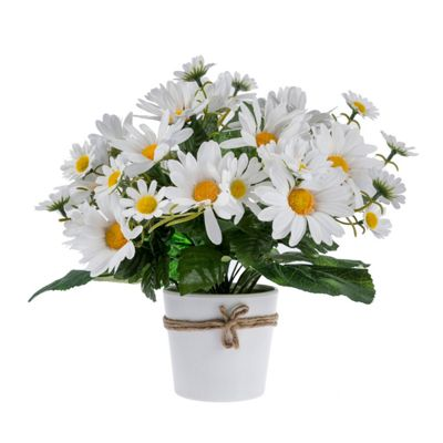 Homescapes Artificial White Daisy Flowers in White Pot