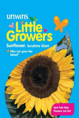 Little Growers Sunflower Sunshine Giant