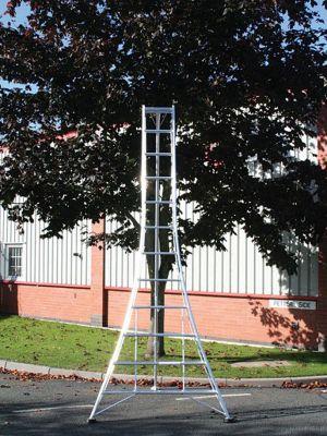 Ladders-Online Trade 3.6m (11.98ft) Standard - Garden Hedge Cutting Tripod Ladder