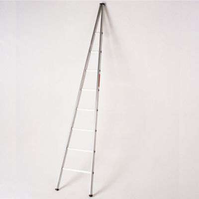 3.0m Single Section Aluminium Window Cleaners Ladder