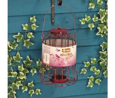 Squirrel Proof Nut Bird Feeder
