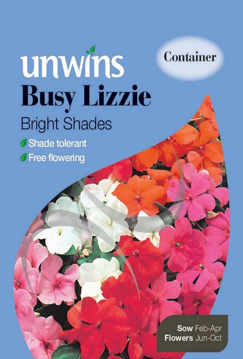 Busy Lizzie Bright Shades