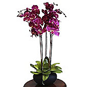 Homescapes Large Oriental Style Cerise Orchids in Black Bowl