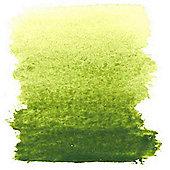 W&N - Awc H/Pan Olive Green