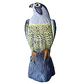 Defenders Decoy Falcon (Life-Like Bird of Prey, Deters Bird and Animal Pests such as Pigeons from Garden Areas), 14 inch (35.5 cm)