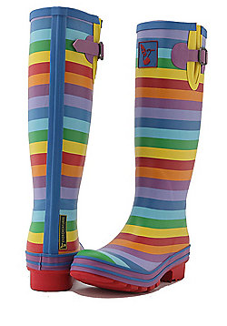 Evercreatures Ladies Festival Wellies Striped Rainbow Pattern - Size 6 (UK)