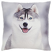 Husky Puppy Cushion