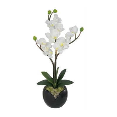 White Orchid Flower Display with Pebbles In Black Pot