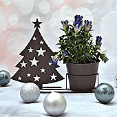 Plant Pot and Stand with Decorative Christmas Tree Silhouette