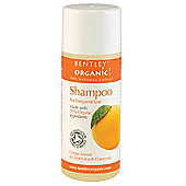 Bentley Organic Shampoo for Frequent Use 250ml