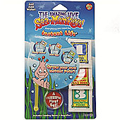Sea Monkeys Instant Life Kit