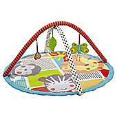 Baby Carousel 2 in 1 Activity Play Gym