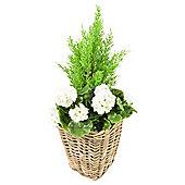 Artificial White Geranium Planter