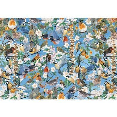 Impossible Puzzle - Garden Birds - 500pc