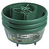Dobbies Garland Plant Halos Set of 3