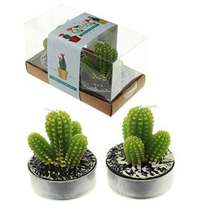 Puckator Spiky Cactus Tea Lights Set of 2