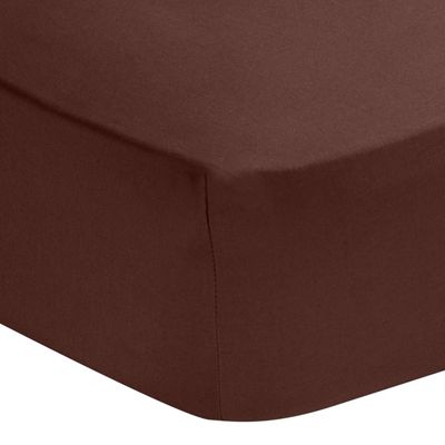 Homescapes Chocolate Egyptian Cotton Deep Fitted Sheet 200 TC, Single