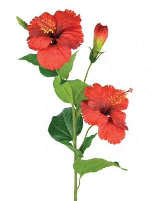 Artificial - Hibiscus - Red