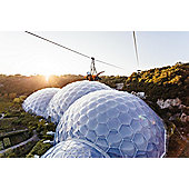 Hangloose at The Eden Project- Zip Wire, Giant Swing, Big Air and The Drop for Two