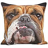Riva Home Animal Bulldog Multicolour Cushion Cover - 45x45cm