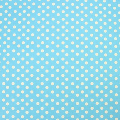 Rosehip Gift Wrap - Pale Blue Dots
