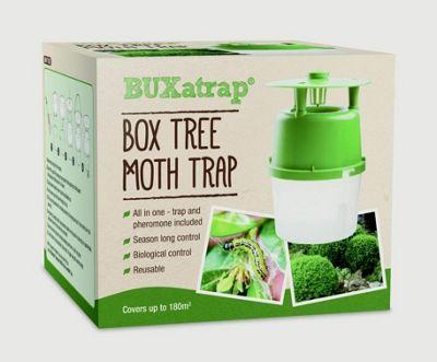 Bayer BUXatrap Box Tree Moth Trap Pheromone Natural - Covers 180m2