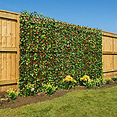Expanding Artificial Hedge With Flowers (1m x 2m) - Red