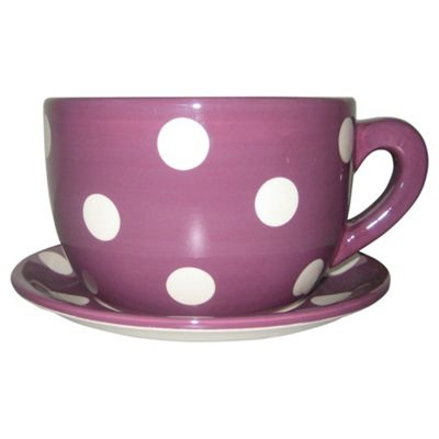 Buy Tesco Giant Cup And Saucer Planter 15cm From Our Planters Range